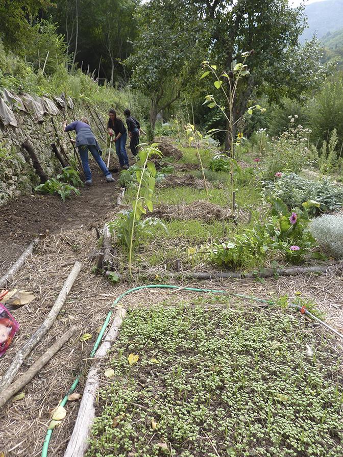 le jardin nourricier et participatif les jardins du loup
