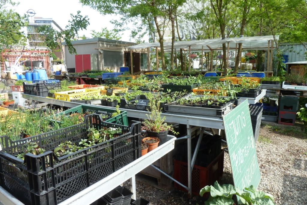 Jardin urbain les jardins du loup for Wavre jardin urbain 2015